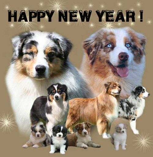 Happy New Year Pictures Of Dogs